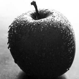 نهال سیب جرومین - سیاه